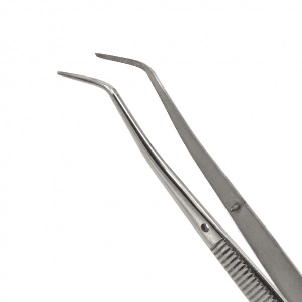 Pinza de Curación Meriam -Marca: 6B Germany Diagnóstico | Odontology BG