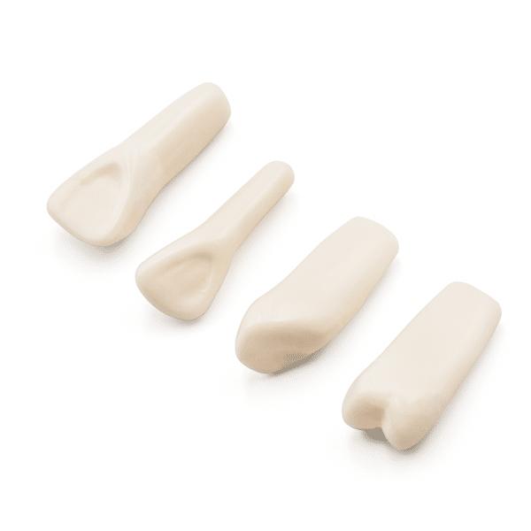 Dientes Tipodonto 860 -Marca: Genérica Articuladores   Odontology BG