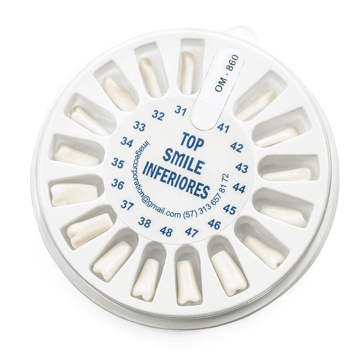 Dientes Tipodonto 860 -Marca: Genérica Articuladores | Odontology BG