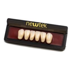 Dientes de Resina Anteriores - Inferiores -Marca: new tek Consumibles de Laboratorio | Odontology BG