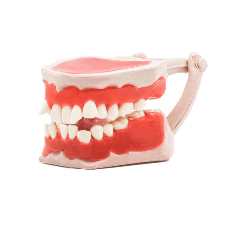 Tipodonto -Marca: Tirden Articuladores   Odontology BG